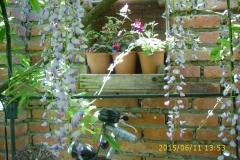 An der Klostergartenmauer-min