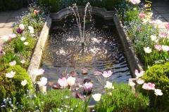 Wasserbecken im Klostergarten im Mai-min