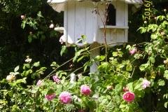 Taubenhaus im Zentrum des Gartens-min