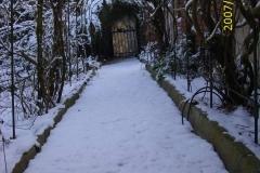 Winter Blauregengang-min